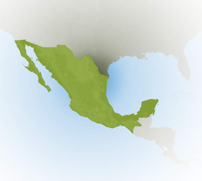 Carte Meteo Mexique