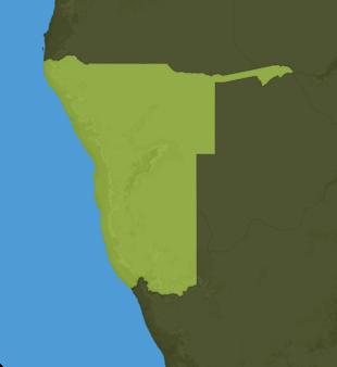 Carte Meteo Namibie