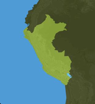 Carte Meteo Pérou