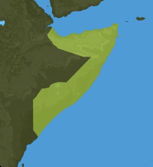 Carte Meteo Somalie
