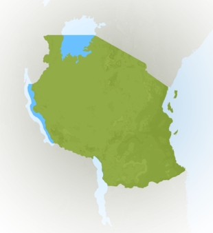 Carte Meteo Tanzanie