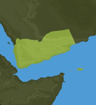 Carte Meteo Yemen