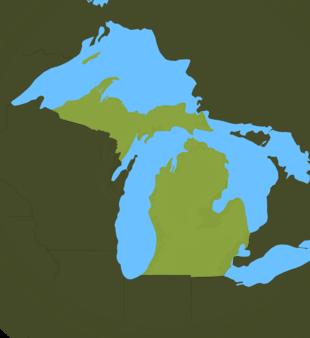 Carte Meteo Michigan