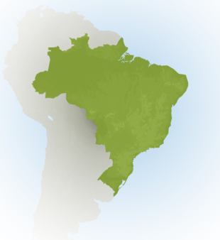 Carte Meteo Brésil