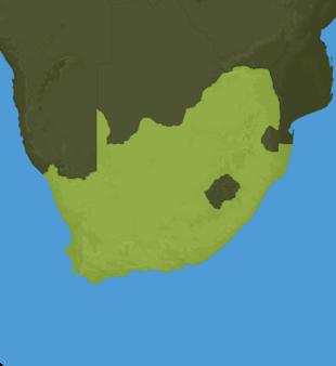 Carte Meteo Afrique du Sud