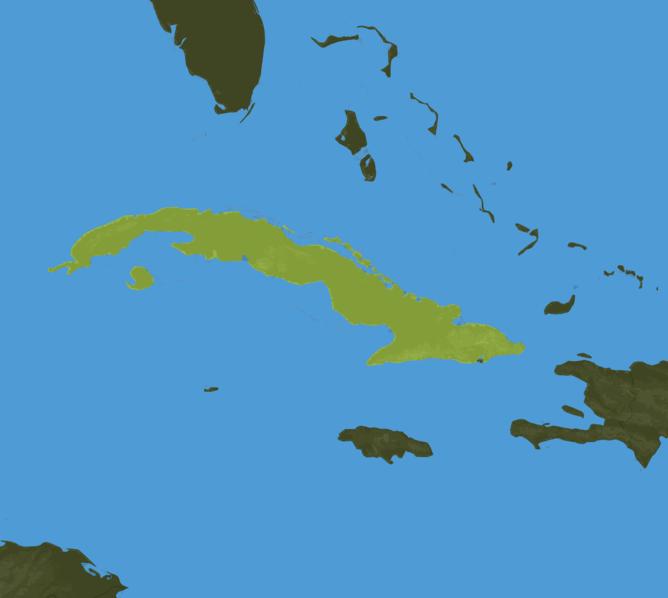 Carte Meteo Cuba