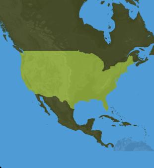 Carte Meteo Etats-Unis