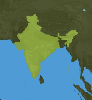 Carte Meteo Inde