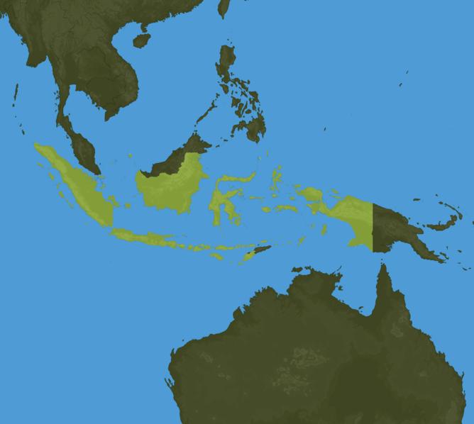 Carte Meteo Indonésie