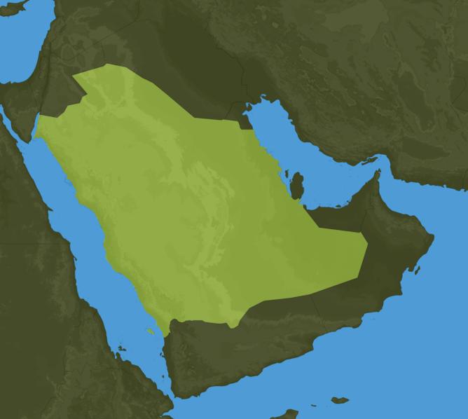 Carte Meteo Arabie-Saoudite