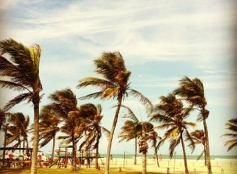 Soleil et chaleur au Brésil (APPLICATION METEO - REPORTER MOBILE)