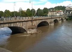 Turin 10100 Crue du Po