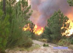 Chaleur Braga Incendie, canicule