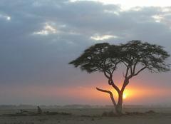 Ciel Nairobi  soleil