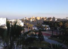 Faune/Flore Monastir Tunisie