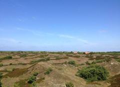 Faune/Flore Spiekeroog Happy Island