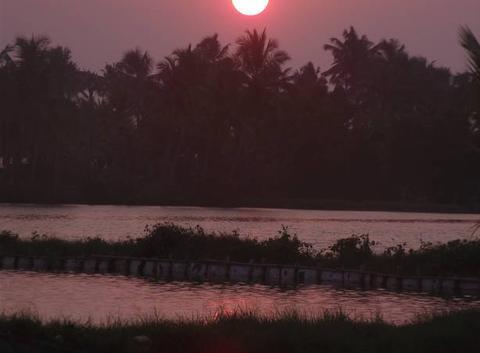 Couché de soleil à Alleppey Inde