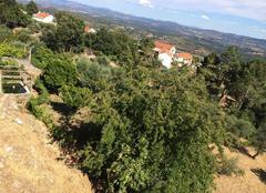 Chaleur Vila do Carvalho Vacance sous la chaleur du Portugal