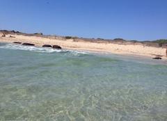 Mer Ibiza 07800 Cavalet