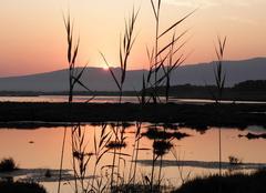Lever de soleil sur un lac de Sardaigne