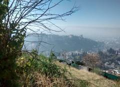 L'alhambra dans la brume