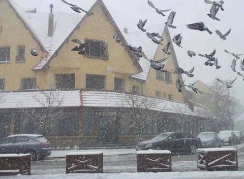 L'hiver: