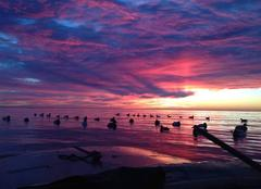 Ciel Deale Levee de Soleil sur Chesapeake Bay