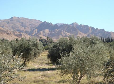 Oasis Montagne Route de Gafsa
