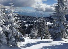 Au loin les alpes