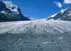 Fonte du Glacier Athabasca (Canada)