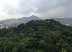 Pluie Hong Kong Pluie