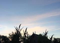 Nuages Sneek Sky