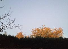 Ciel Charleroi Ciel clair et dégagé à 7h00