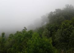 Brouillard A'n Draham Ma ville