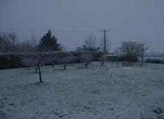 Il neige!!!