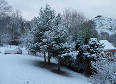 Le jardin en hiver