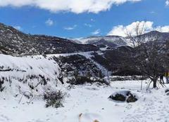 Neige Beni Mellal Maroc neige