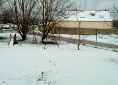 Plus de neige que prevue