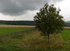 Pluie Dresde Panorama