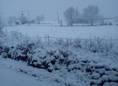 Les salles sous la neige