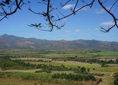 Faune/Flore Sancti-Spiritus Manaca Iznagadas (Cuba) classé au patrimoine mondial UNESCO.