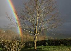 Arc en ciel et pluie
