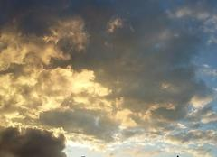 De jolies couleurs  dans le ciel