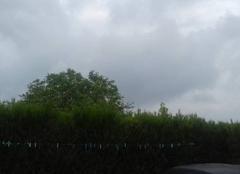 Bonjour, météo de Châtres