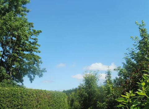 Ciel bleu et chaleur-vers 13h