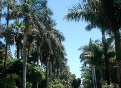 Chaleur Santa Cruz de Tenerife 38001 Santa Cruz