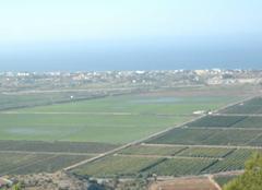 Vue depuis Monté Pégo sur les rizières  ,les agrumes , et la mer