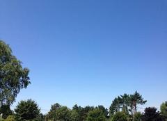 Ciel bleu et grand soleil....