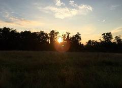 Soleil couchant le 22/07