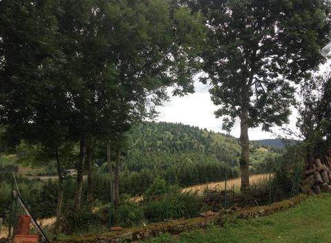 Forêt Lanarce